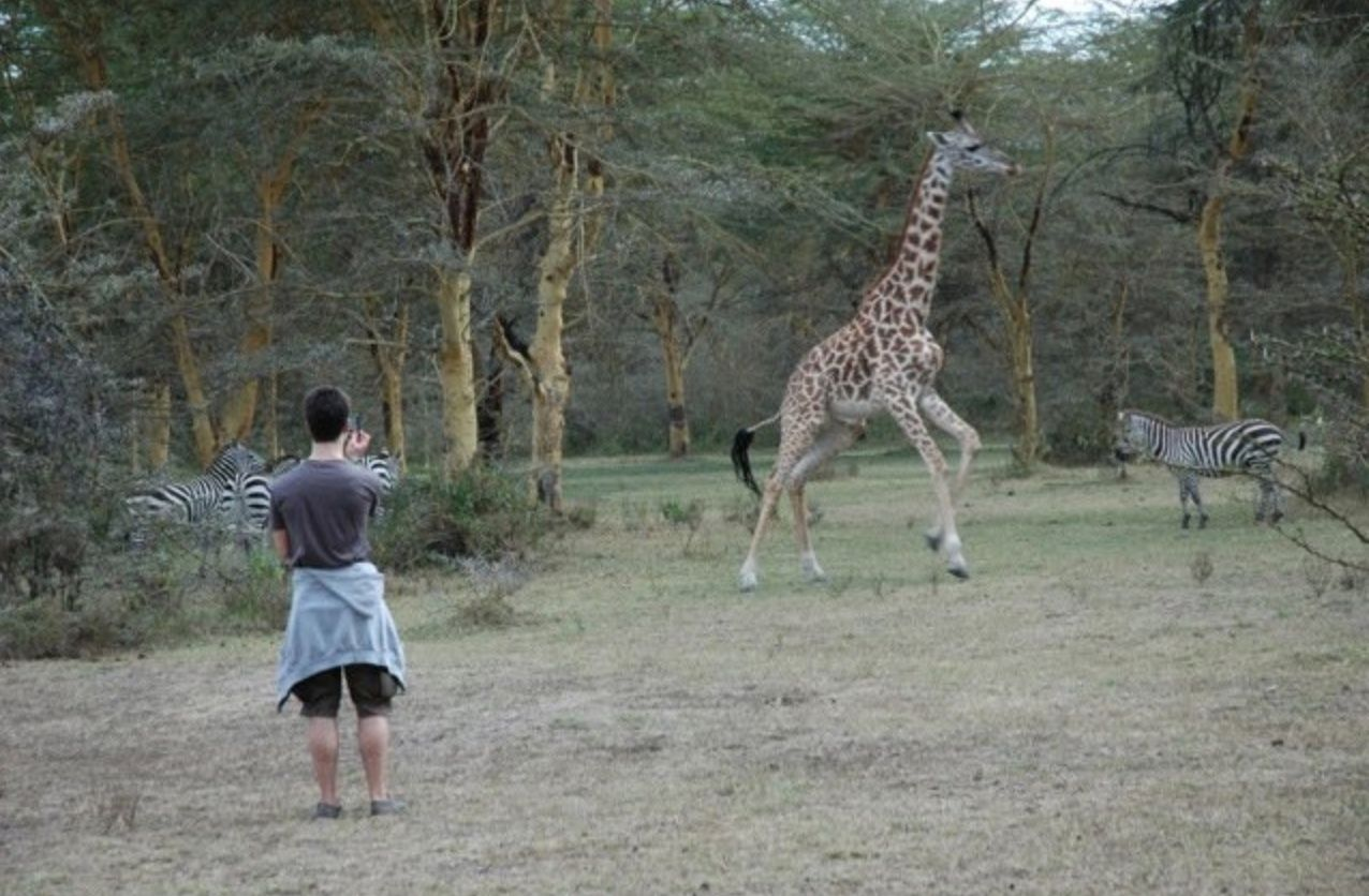 Get close to nature on your free Safari Gap Year Experience