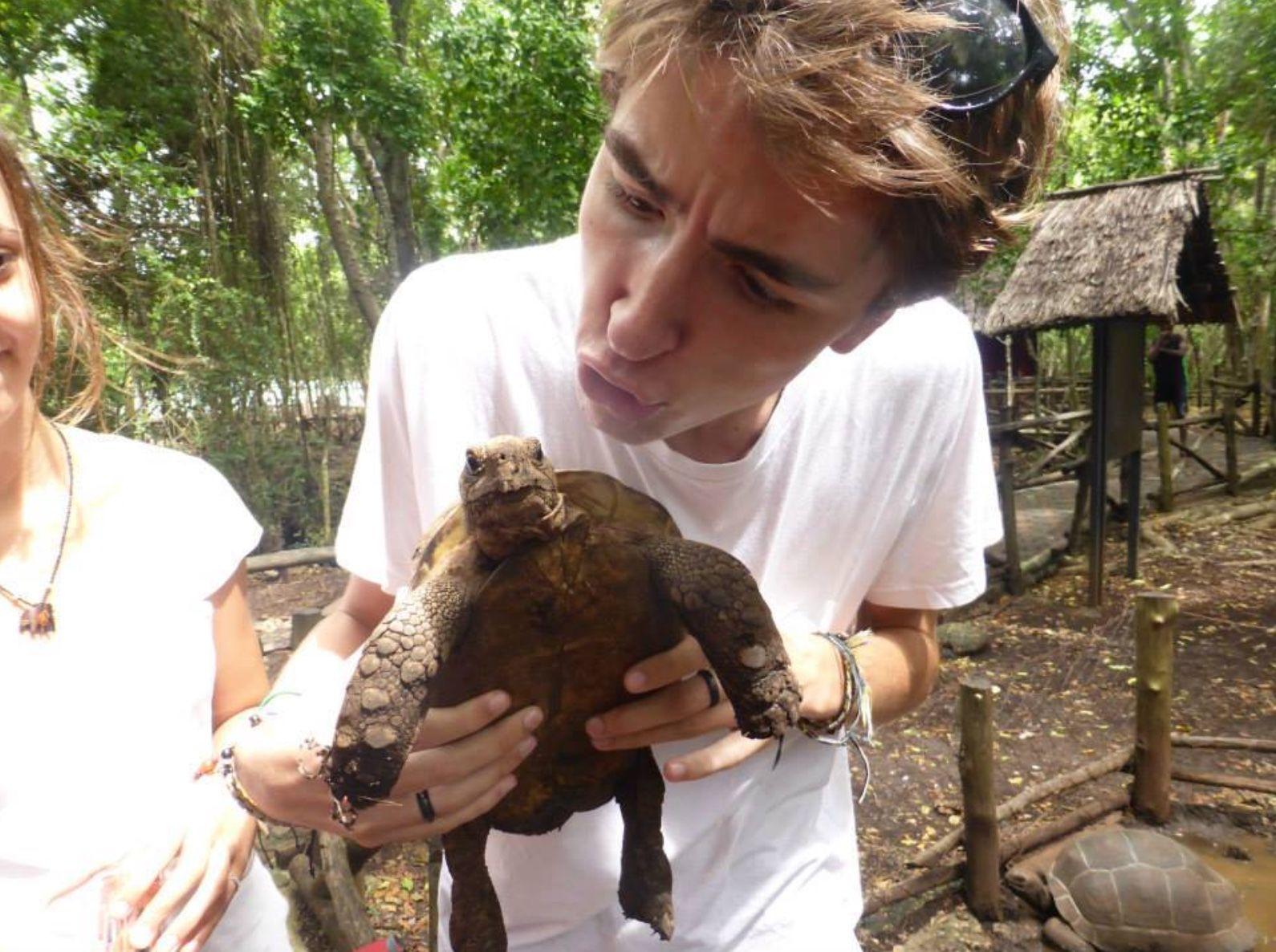turtle selfie