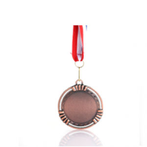 Striep Medal Awards & Recognition Medal AMD1011
