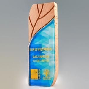 Ye Crystal Wooden Awards Awards & Recognition CRYSTAL New Products AWC1198