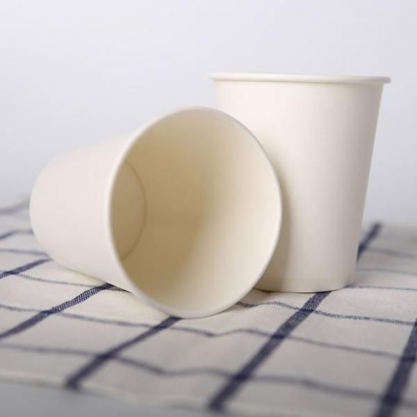 240ml Paper Cup Food & Catering Packaging FUP1009