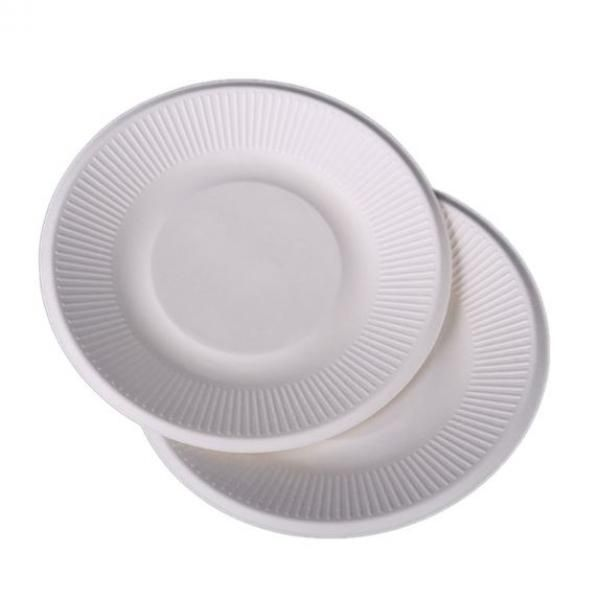 21cm Round Paper Plate Food & Catering Packaging FPB1000
