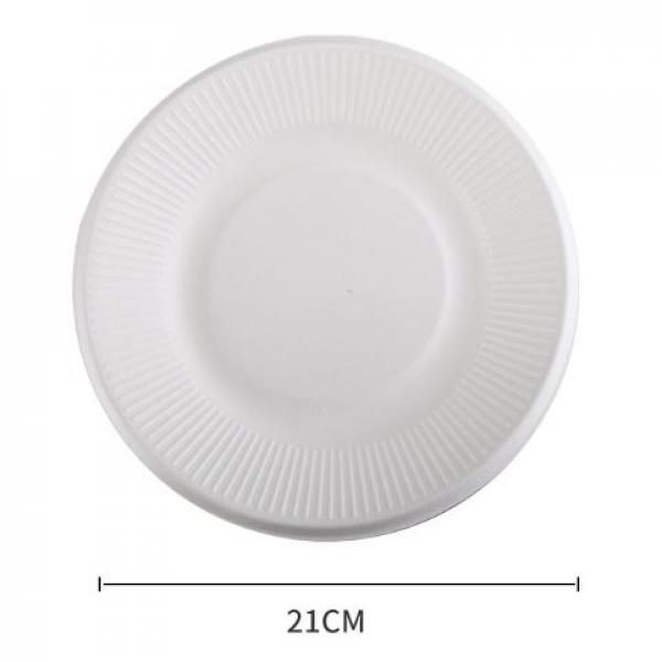 21cm Round Paper Plate Food & Catering Packaging FPB1002-1