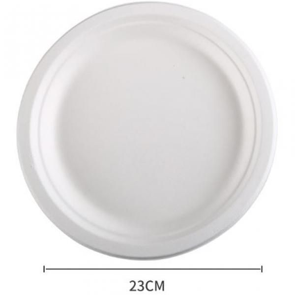23cm Round Paper Plate Food & Catering Packaging FPB1003