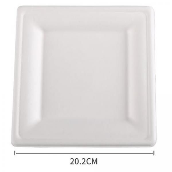 20.2cm Square Paper Plate Food & Catering Packaging FPB1005