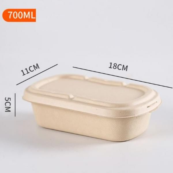 700ml Bento Box Food & Catering Packaging FTF1004