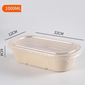 1000ml Bento Box with PP lid Food & Catering Packaging FTF1001