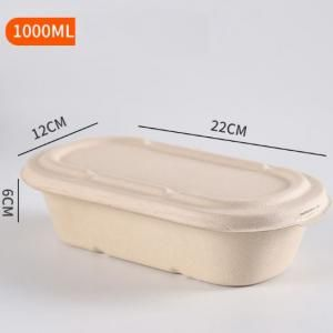 1000ml Bento Box Food & Catering Packaging FTF1005