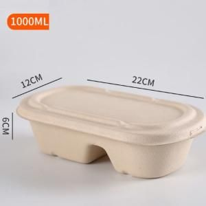 1000ml 2 Compartment Bento Box Food & Catering Packaging FTF1007