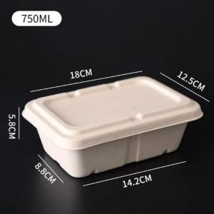 750ml Rectangle Bento Box Food & Catering Packaging FTF1010