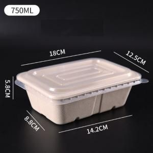 750ml Rectangle Bento Box with PP lid Food & Catering Packaging FTF1008