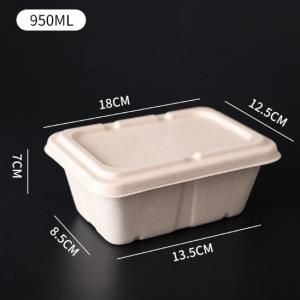 950ml Rectangle Bento Box Food & Catering Packaging FTF1011