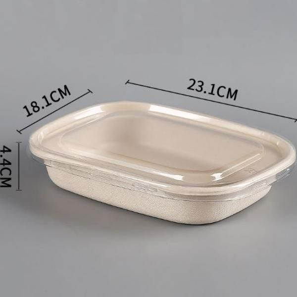 1100ml Salad Box with PP Lid Food & Catering Packaging FTF1014