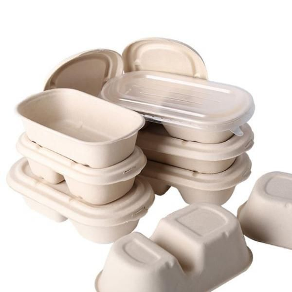 700ml 2 Compartment Bento Box with PP lid Food & Catering Packaging FTF1000