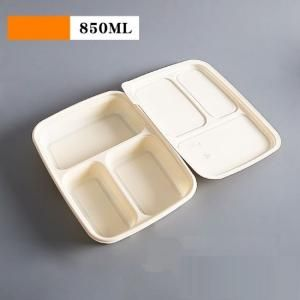 3 Compartment Bento Box Food & Catering Packaging FTF1015