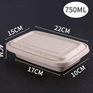 750ml Paper Pulp Rectangle Bento Box Food & Catering Packaging FTF1052