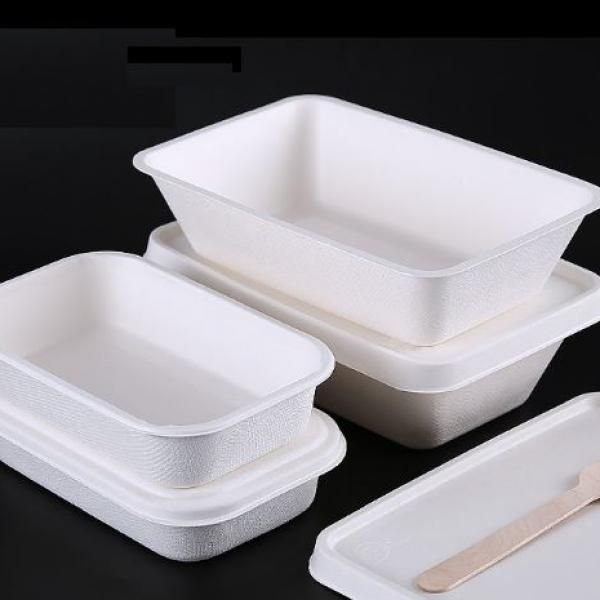 800ml Paper Pulp Lunch Box Food & Catering Packaging FTF1057-1