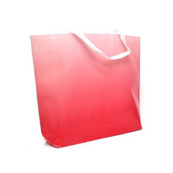 Laminated Shopper Bag Other Bag Bags Best Deals RACIAL HARMONY DAY TSH2602_2