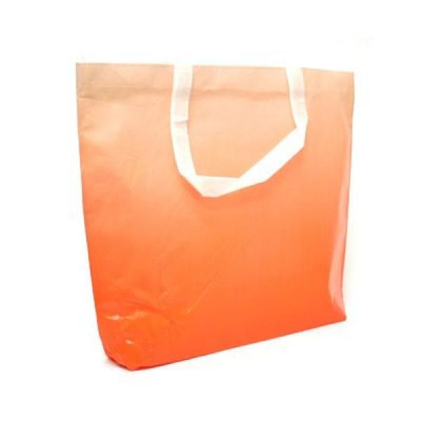 Laminated Shopper Bag Other Bag Bags Best Deals RACIAL HARMONY DAY TSH2602_3