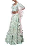 Floral stalk Embroidered Lehenga Set with double dupatta