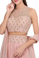 Hand embroidered lehenga with blouse & net dupatta