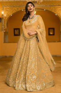 Mirror Jaal Embroidered Lehenga Set