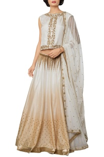 Multi-colored silk, net & chanderi hand embroidered lehenga with blouse & embroidered dupatta