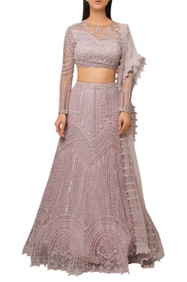 Blush pink organza embroidered lehenga with sheer back blouse