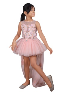 Peach net ballerina dress with zardozi embroidered lace