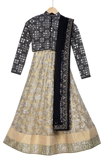 Beige pre-embroidered skirt with net dupatta & mirror blouse