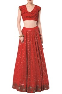 Embroidered lehenga with  cap sleeves blouse