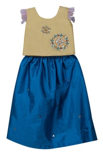 Embroidered top with lehenga skirt