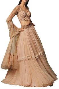 Embellished sheer net lehenga set