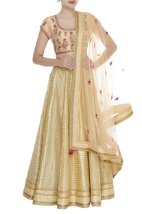 Zardozi embroidered raw silk lehenga set