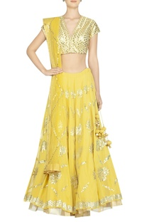 Embroidered lehenga with blouse and dupatta
