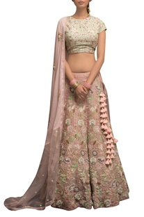 Embellished blouse with lehenga & dupatta