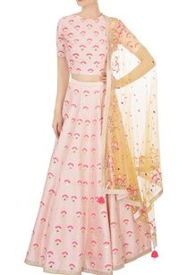 light-pink-raw-silk-lehenga-set