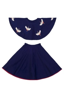 blue-embroidered-crop-top-and-skater-skirt-set