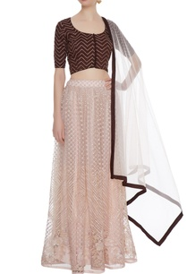 light-pink-net-sequin-embroidered-lehenga-with-blouse-dupatta