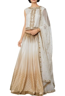 multi-colored-silk-net-chanderi-hand-embroidered-lehenga-with-blouse-embroidered-dupatta