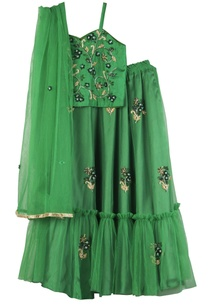 goblin-green-net-hand-embroidered-lehenga-set