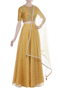 embroidered-crop-top-blouse-with-lehenga-and-dupatta