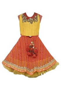 georgette-skirt-with-silk-blouse