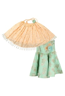 halter-embroidered-blouse-with-brocade-skirt