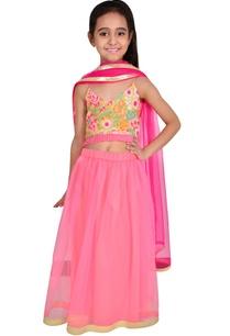 pink-net-embroidery-lehenga