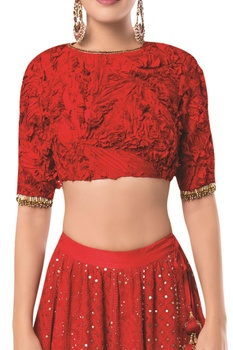 Embroidered lehenga with textured blouse