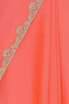 Chiffon sari with embroidered blouse