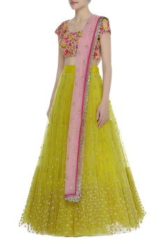 Hand embroidered lehenga with blouse & dupatta