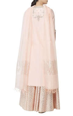 Light pink printed flared lehenga