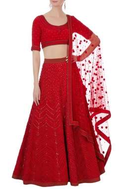 red silk, cotton chanderi & net 3d embroidered lehenga set